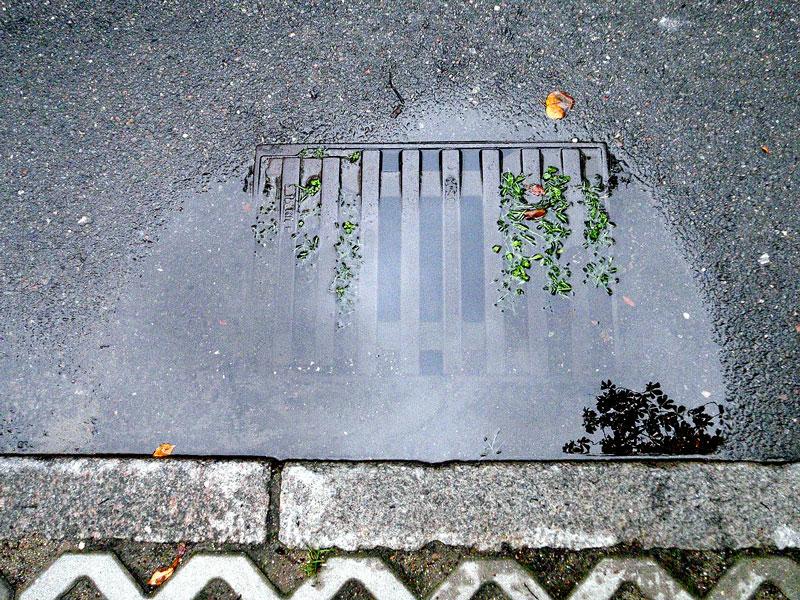 studzienka-burzowa-wrzeszcz-wrzesien-2012-low