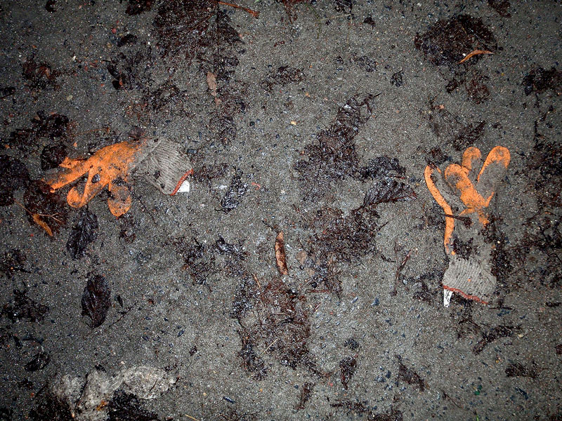 para-Orange-flesz-low