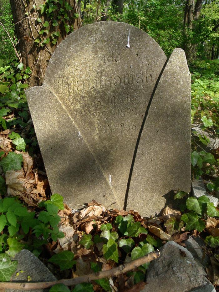 cementarz-na-szubienicznej-002