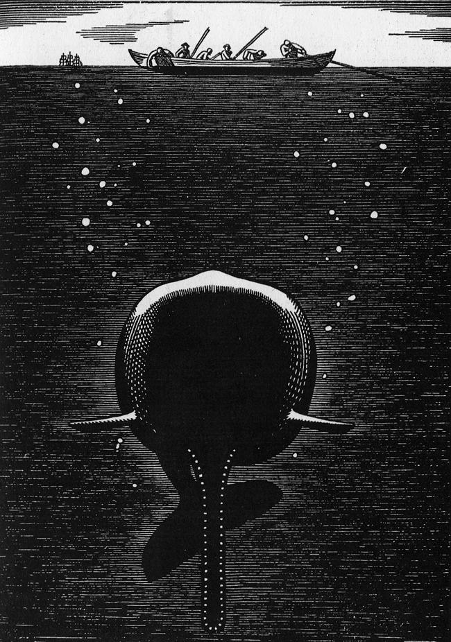 rockwell kent-whale-01