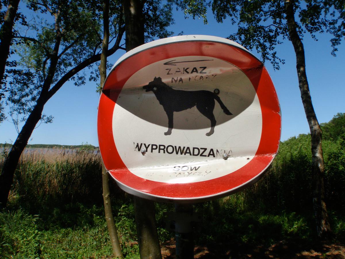 zakaz-wyprowadzania-psów-001