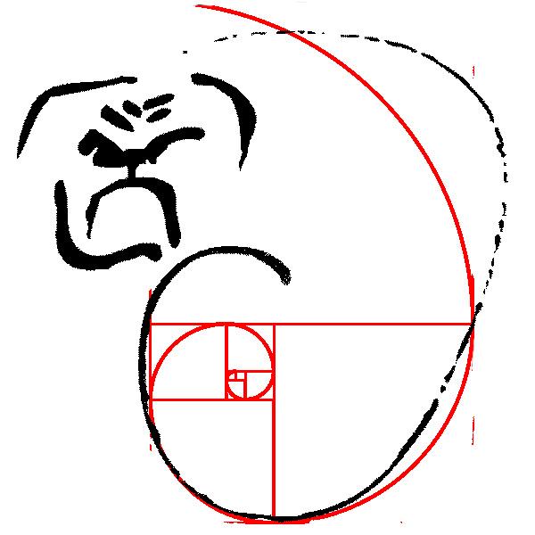 Frania-1bit-600pxl-fibonacci