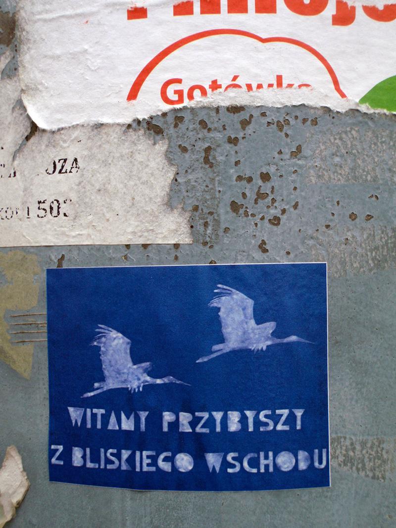 witamy-Bociany-pion