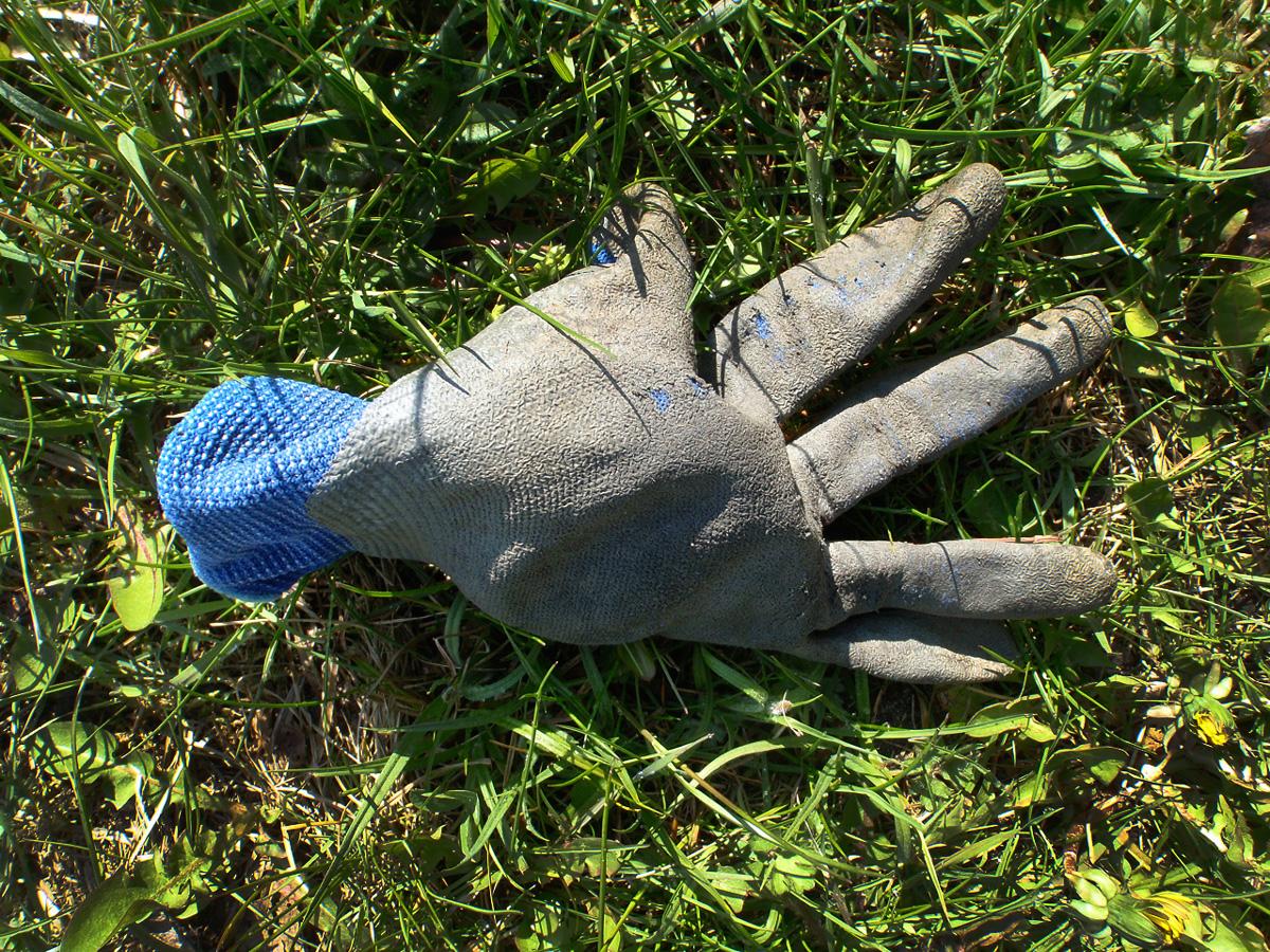 nieoryginalna-lecz-slawna-glove